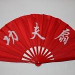 Kids Kungfu Fan